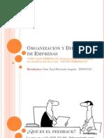 Organización y Dirección de Empresas - Feedback