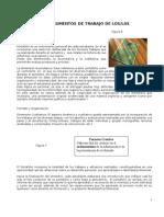 Instrumentos de Trabajo y Evaluacion 1