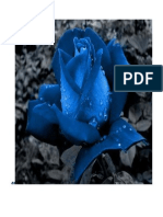 Rosa Azul.pdf Mili