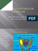 Biotipologia Osea de La Pelvis