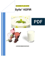 Business Plan Kefir