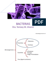 BACTERIAS_completo