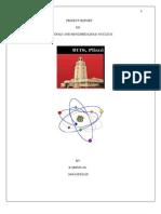 Indole and Benzimidiazole Nucleus