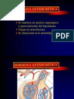 8. Hormona Anti Diuretic A. Diabetes Insipida