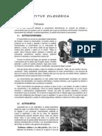 LA ACTITUD FILOSÓFICA Y LAS DISCIPLINAS FILOSÓFICAS