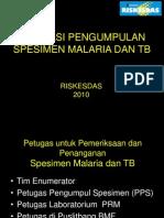 Simulasi Malaria Tb