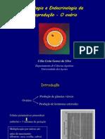 Mestrado_Fisiologia