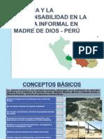 Minería Informal en Madre de Dios - Perú