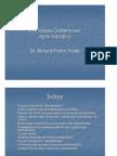 Proceso_Contencioso_Administrativo - Richard Martín Tirado