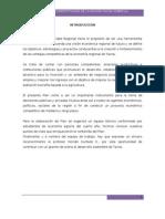 Planificacion de La Cebolla en Tacna[1]