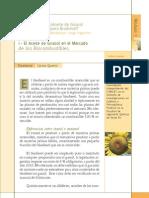 Aceite Girasol y Los Bio Combustibles