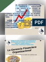 PRESENTACIÓN GERENCIA FINANCIERA ORGANIZACIONAL