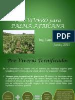 Pre-Vivero Para Palma Africana