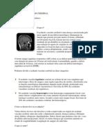 Acidente Vascular Cerebra1