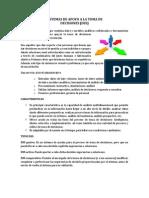 Sistemas de Apoyo a La Toma de Decisiones (Dss).