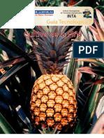 GUIA PIÑA