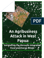 Agrbusiness Attack in Papua