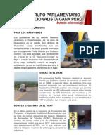 Bancada Nacionalista Gana Perú - Boletín Nº 29