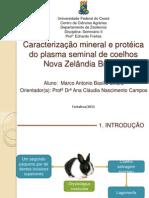 Caracterização mineral e proteica do plasma seminal de