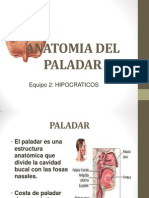 Anatomia Del Paladar (Foro)