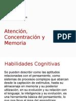Atencion concentracion memoria