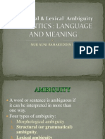 Lexical and Structural Ambiguity
