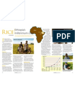 RT Vol. 11, No. 1 Ethiopia's millennium crop