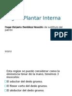 Region Plantar Interna