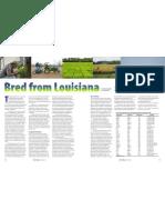 RT Vol. 10, No. 2 Bred from Louisiana
