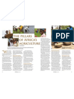 RT Vol. 10, No. 2 The pillars of Africa's agriculture