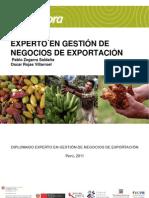 Gestion2011 - Guia y Manual Para Proyecto Idea de Negocio