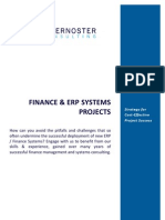 Finance and ERP Systems - Strategy for Cost-Effective Project Success