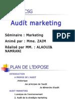 Audit Marketing