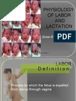 Labor and Lactation