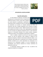 5ESTACIÓN DE LAS DEVELACIONES FINALsi2