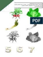 legumeumbre