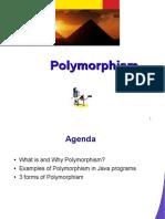 javapolymorphism