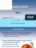 Aula_Bioquímica Celular-Água_1º