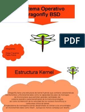 Dragonflybsd Núcleo Sistema Operativo Archivo De