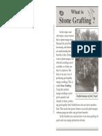 14 Stone Grafting