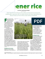 RT Vol. 10, No. 1 Greener rice