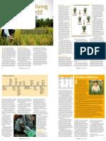 RT Vol. 9, No. 4 Hybridizing the world