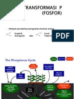Biotek Pertanian II - Biotransformasi Unsur p, n, s Revisi 1