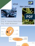Bakteri, Virus Dan Jamur