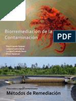 Biorremediacin de La Contaminacin