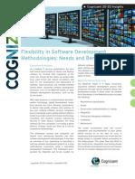 Flexibility in Software Development Methodologies