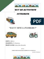 Proiect de Activitate Integrata