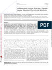 Doxorubcin Derivative