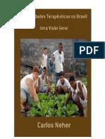 Comunidades Terapêuticas no Brasil ebook