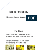 Neuroscience Ppt 2458